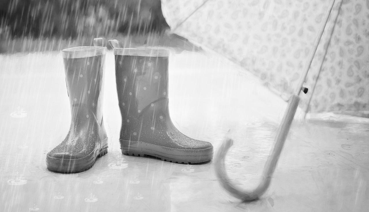 Niederschlagswette